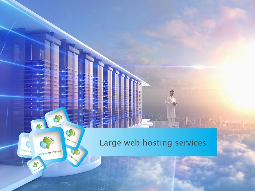 Large Web Hosting Services